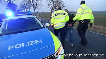 Verfolgungsjagd: 16-Jähriger in Auto unterwegs - doch die Polizei lässt ihn davon fahren - hallo-muenchen.de
