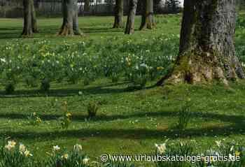 Hölderlins Zeit voller Glück in Bad Driburg   Bad Driburg, Teutoburger Wald - Urlaubskataloge-gratis