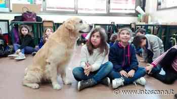 Esperimento di 'Pet Therapy' in classe a San Casciano Val di Pesa - Intoscana.it - inToscana