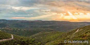 Lugares de la Biblia: El Monte Carmelo, donde Dios derrotó a los paganos - Aleteia ES