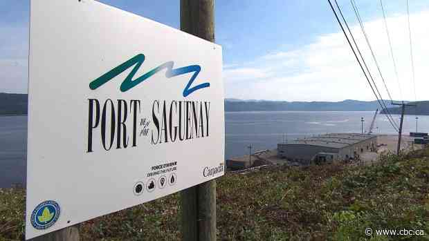 Warren Buffett's company bails on Saguenay LNG project because of 'Canadian political context,' promoter says - CBC.ca