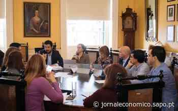 Câmara do Funchal aprova plano de controlo da população de pombos - Jornal Económico