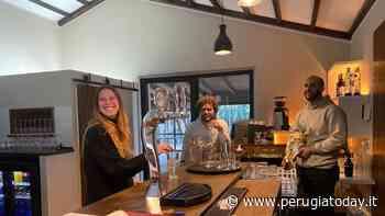 """Nuove aperture, a San Mariano arriva Lievito: """"Pizza di altissimo livello da gustare con cocktail e bollicine"""" - PerugiaToday"""