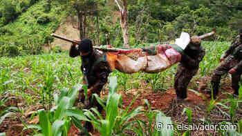 A cinco meses del asesinato de dos hermanos soldados en Guatajiagua, no hay rastro de los asesinos - elsalvador.com