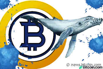 Bitcoin Gold Whale Allegedly Controls Half the BTG Supply - Bitcoin News