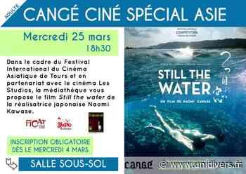 Cangé ciné spécial Asie Médiathèque de Cangé Saint-Avertin 25 mars 2020 - Unidivers