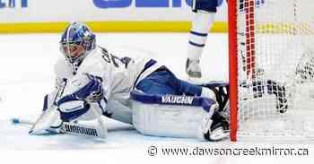 Ducks deal Maple Leafs 3rd straight loss, 2-1 - Dawson Creek Mirror