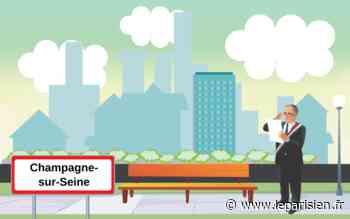 Elections municipales 2020 de Champagne-sur-Seine : qui sont les candidats - Le Parisien