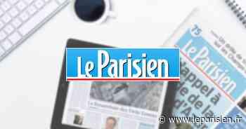 Candidats aux élections municipales 2020 à Tremblay-en-France - Le Parisien