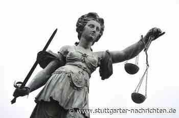 Amtsgericht Besigheim - Autofahrer war unaufmerksam – und zu schnell - Stuttgarter Nachrichten