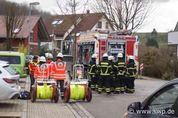 Neckartailfingen: Zimmerbrand: Zwei Katzen gerettet - SWP