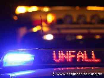 Der Schaden beträgt circa 10.000 Euro: Neckartailfingen: Zu schnell und gegen Baum gekracht - esslinger-zeitung.de