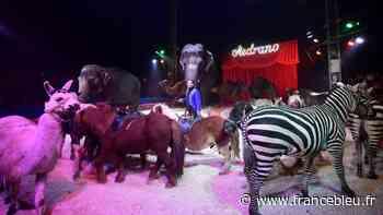 Interdit à Montpellier, le cirque Medrano s'installe à Vendargues - France Bleu