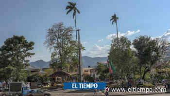 Hallan muerto a presunto autor de masacre en Apía, Risaralda - Otras Ciudades - Colombia - El Tiempo