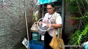 Pouso Alegre entra em alerta devido a alto número de focos de dengue - PousoAlegre.net