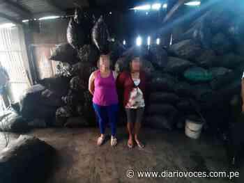 Incautan 10 toneladas de carbón ilegal en Juanjuí - Diario Voces