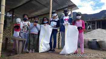 Cívica juvenil aporta a la seguridad en La Llanada Nariño - Diario del Sur