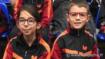 Plaisance-du-Touch. Tennis de Table : des champions en tournoi à Auch - ladepeche.fr