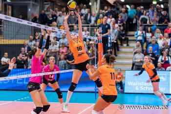 Volleyball - NawaRo will Sieg gegen Suhl in Erfurt vergolden - idowa