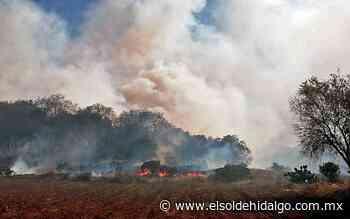 Incendio forestal en Tepalcingo - El Sol de Hidalgo