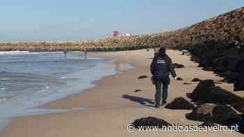 Apreensão de redes ilegais de pesca na praia da Barrinha de Esmoriz - Notícias de Aveiro