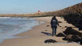 Apreensão de redes ilegais de pesca na praia da Barrinha de Esmoriz - Notícias de Aveiro - Notícias de Aveiro