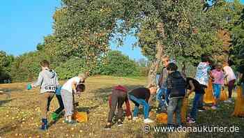 Walting: Mehr als eine 'Schule im Grünen' - Waltinger Grundschule erläutert die Hintergründe zu Umweltschule und Mittagsbetreuung - donaukurier.de