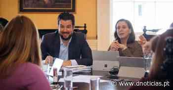 CMF avança com Plano de Controlo da População de Pombos - DNoticias