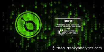 SiaCoin (SC) Storage Economics on Blockchain and SkyPages Demo of 2048 Game - The Cryptocurrency Analytics