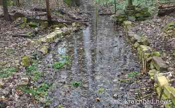 Wasser marsch für das Walzbachtal: Oberlauf des gleichnamigen Baches fließt wieder - kraichgau.news