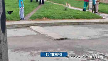 Masacre en Antioquia: asesinan a cinco personas en Santa Rosa de Osos - El Tiempo