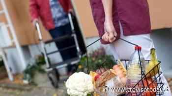 Mogliano Veneto: al via il servizio di spesa e farmaci a domicilio - TrevisoToday