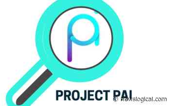 Project PAI (PAI) Jumps By 15% Within 30 Minutes - NewsLogical