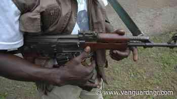 Armed men gun down vigilante official in Makurdi - Vanguard