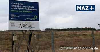 Zeuthen - Sonnenstrom aus Zeuthen: Gemeinde plant Solarpark im Wohngebiet - Märkische Allgemeine Zeitung