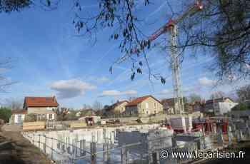 Dammarie-les-Lys : les projets immobiliers près de la gare inquiètent des riverains - Le Parisien