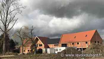 Aidez les compagnons de La Canopée, à Bondues, à planter les arbres de leur jardin ! - La Voix du Nord
