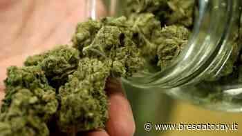 Nuvolento: spacciava droga al bar, arrestato operaio di 21 anni - BresciaToday