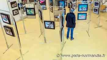 Les photographes du club de Canteleu exposent du 13 au 31 mars - Paris-Normandie