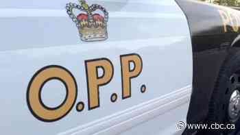 Atikokan RIDE check leads to large cannabis bust by OPP - CBC.ca