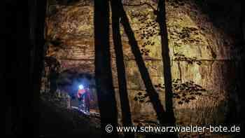 Grabenstetten: Versicherung zahlt für Rettung aus Falkensteiner Höhle - Schwarzwälder Bote - Schwarzwälder Bote