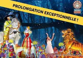 Le festival Thoiry Lumières Sauvages joue les prolongations - Zoonaute.net - Zoonaute