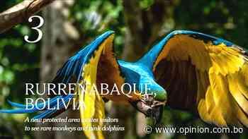 New York Times elige a Rurrenabaque como el tercer mejor destino turístico - Opinión Bolivia