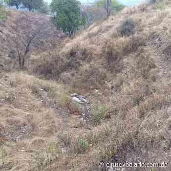 Hallan osamenta en propiedad agrícola en Vallejuelo de San Juan - El Nuevo Diario (República Dominicana)