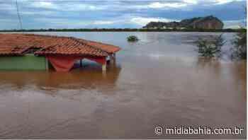 Nível do Rio São Francisco ultrapassa 8m em Bom Jesus da Lapa - Mídia Bahia
