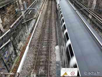 RER D. Le trafic coupé entre Paris et Orry-la-Ville après un accident de personne à Gare de Lyon - actu.fr