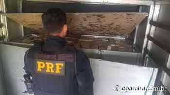 Polícia apreende maconha em fundo falso de caminhão em Laranjeiras do Sul - O Paraná