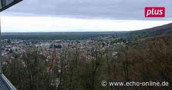 Ist Wald in Seeheim-Jugenheim Wirtschaftsgut oder Naturraum? - Echo Online