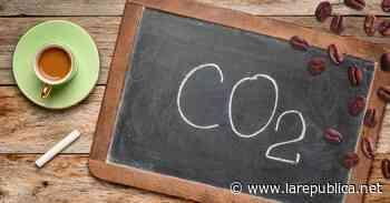 Tilarán, Abangares y Monteverde producirán café carbono neutral - Periódico La República (Costa Rica)
