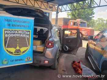 PMR apreende mais de duzentos quilos de maconha em Ivinhema - Nova News